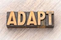 adapt - word asbtract in wood type