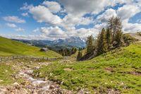 Mountain stream on the Alpe di Siusi