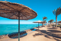Sandy sea beach filled with sun umbrellas made of straw and sun beds on the background palm trees and blue sea. Sky with the copyspace for your text