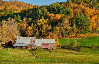 Jenne Farm with barn at sunny autumn day