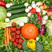 Vegetables collection food background square tomatoes carrots potatoes fresh vegetable