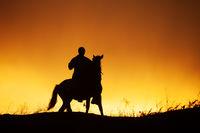 Silhouette of rider on horseback and beautiful orange sunset