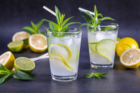 Cold refreshing summer lemonade with mint in glasses