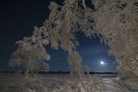 Winter scenery, Muonioaelven river, Karesuando, Lapland, Sweden