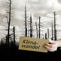 Cardboard sign with the inscription Climate Change. In the background a dead forest.