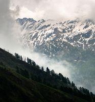 Mist Raising Above the Treeline in the Snowy Mountains