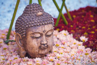 Buddha head statue on a flower bed