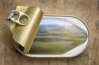 fresh landscape in open tin can