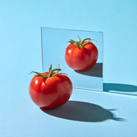 Ripe tomato with a stem reflected in a mirror on a blue background with copy space. Healthy product