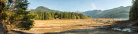 Dry Baker Lake with tree stumps into the ground that water has left visible with mountains and forest in the background
