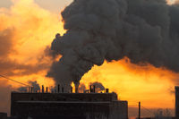 the plant with smoke and dirty air-pollution