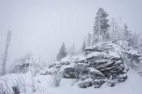schneebedeckte Bäume und Felsen im Winter