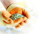 Farmer shows fertilizers in his hands weared in gloves