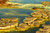 Mushroom-like sulphure rock formations in an acid brine pool, geothermal field of Dallol,Ethiopia