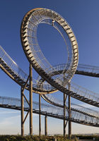 DU_Tiger and Turtle_73.tif