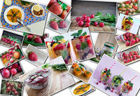 Collage of fruits and vegetables, healthy food.