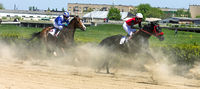 Horse race for the prize of Letni.