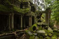 Mossy stone columns of Ta Prohm temple