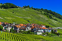 Winegrowing village Epesses in the UNESCO-listed Lavaux vineyard region, Vaud, Switzerland