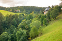 landscape scenery near Freiburg Breisgau south Germany