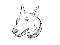 Bull Terrier Dog Breed Cartoon Retro Drawing