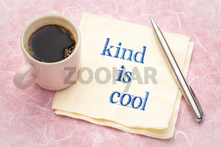 Kind is cool note on napkin