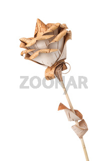 Rose flower made of wood and birch bark
