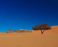 Landscape of sand dune and sundstone nature sculpture at Tamezguida , Tassili nAjjer national park in Algeria