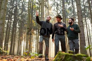 Drei Förster beim Rundgang durch einen Wald
