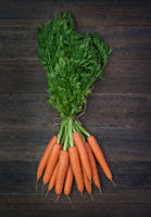 Bunch of fresh carrots