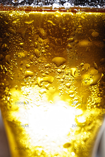 glass, beer, isolated, drop, alcohol, pint, water, foam, frosty,
