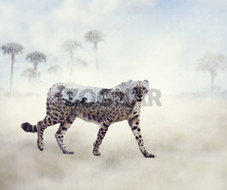 Double exposure of walking cheetah and trees