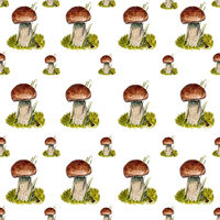 Seamless pattern with boletus mushrooms.
