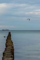 Ruhiger Tag an der Ostsee-14.jpg