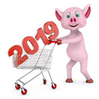 pig carries 2019