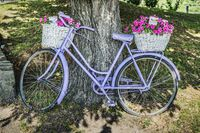 Altes Fahrrad mit Blumen | Old bicycle with flowers