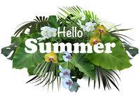 Summer Tropical Banner or Flyer Design