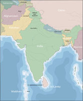 Mao of South Asia