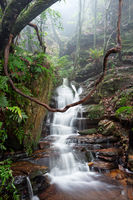 Nature's playground are the best  Blue Mountains Australia