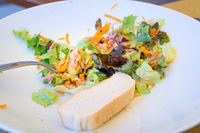 Mixed salad plate with tuna and bread