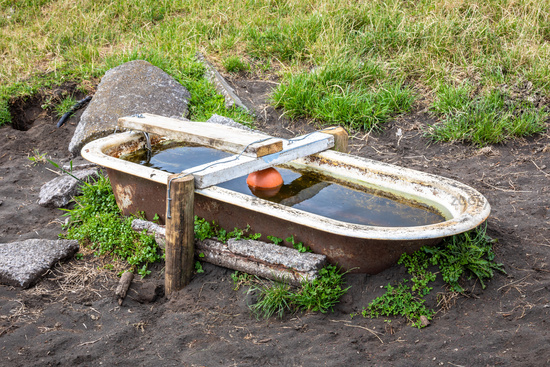 an old tub for animals potions