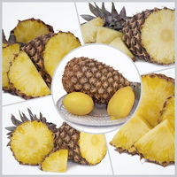 Collage of photos with the image of pineapple