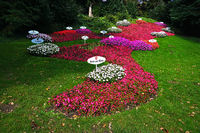 flower arrangement on the isle of mainau in Lake Constance, Germany