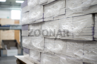 Heat Shrink Wrapped Books Awaiting Delivery Industrial Printing Production Automated Packaging Machinery