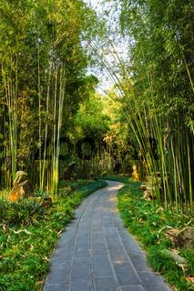 Wangjiang Pavilion in Wangjianglou park. Chengdu, Sichuan, China