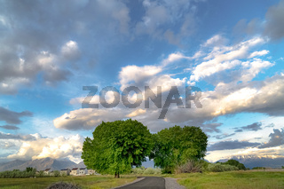 Road and lush trees on a vast field with homes and mountain in the background