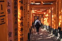KYOTO, JAPAN - 09 FEB 2018: Young girl walking down a path full of red wooden toriis with black inscriptions in Fushimi Inari Shrine Temple
