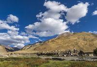 Village enroute Tso Moriri, Ladakh, India