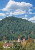 Klosterreichenbach near Baiersbronn in Black Forest,Baden Wuerttemberg,Germany