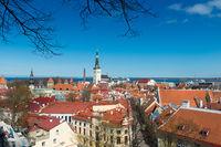 Tallin Old Town Panorama